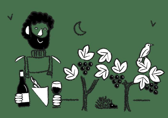 Madivin à la rencontre des vignerons